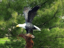 A photo of Eagle Sculpture