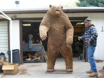 Photo of OUT OF THE WOODS  a pine needle bear