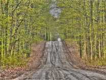 A photo of MIchigan Back Roads