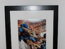Photo of Carousel Horse