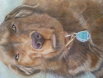 Photo of Pet Portraits By Sue