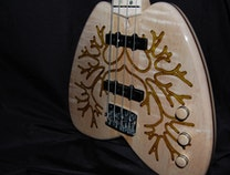 Photo of Cystic Fibrosis Bass