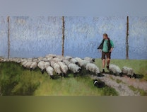 Photo of Counting Sheep