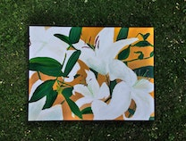 Photo of Lilies in White