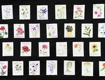Photo of Floral Alphabet in Watercolor