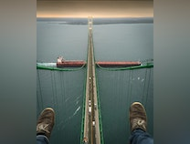 Photo of Where Would You Dangle?